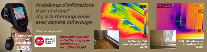 thermographie professionnelle
